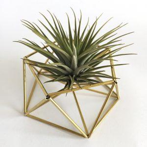 DIY table planter MARS (brass)
