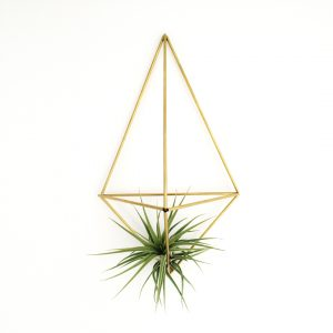 DIY wall planter Facet (brass)