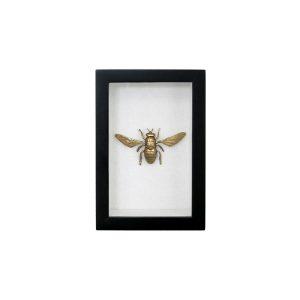 messing bijen lijstje